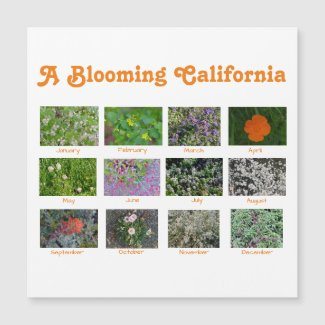 A Blooming California