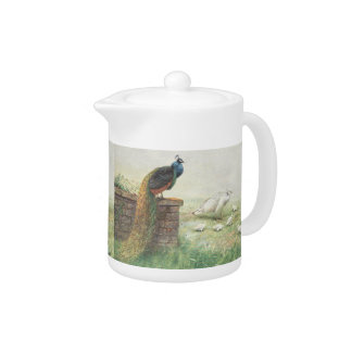 A Blue Peacock and white peahen with chicks Teapot