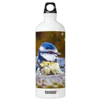 A Blue Tit in the Birdbath Aluminum Water Bottle