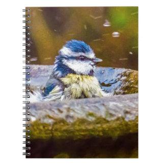 A Blue Tit in the Birdbath Spiral Notebook