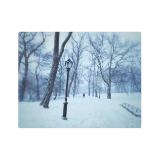 A Blustery Walk In The Park Metal Print