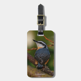 A Bold Red-Breasted Nuthatch Luggage Tag
