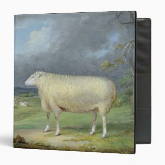 A Border Leicester Ewe (oil on canvas) 3 Ring Binder
