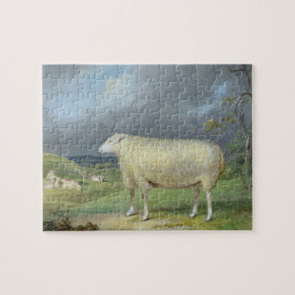 A Border Leicester Ewe (oil on canvas) Jigsaw Puzzle