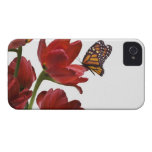 a bouquet of red tulips is visited by a monarch iPhone 4 cover
