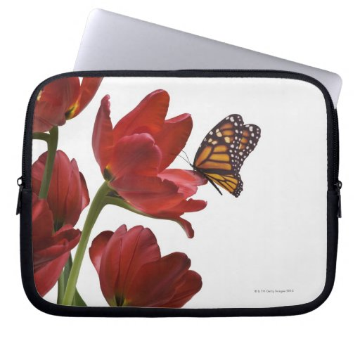 a bouquet of red tulips is visited by a monarch laptop sleeve