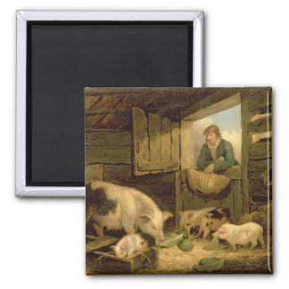 A Boy Looking into a Pig Sty, 1794 (oil on canvas) Magnets