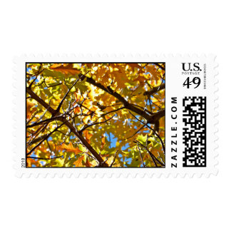 A Brache Of Fall Stamps
