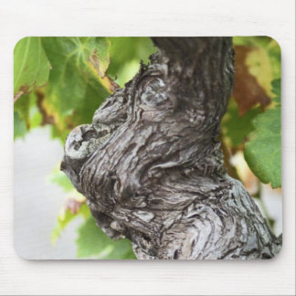 A branch of a very old vine with gnarled mouse pad