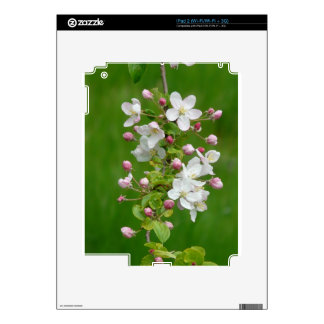 A Branch of Apple Blossom Skin For The iPad 2