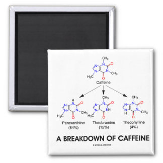 A Breakdown Of Caffeine (Chemical Molecules) 2 Inch Square Magnet