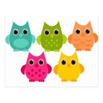 A Bright Bunch of Owls Postcard