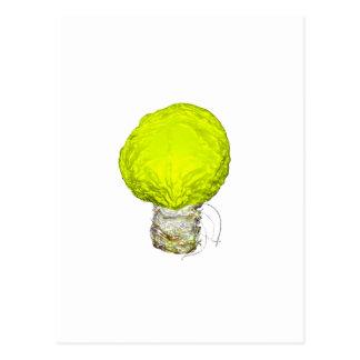 A Bright Idea About Cabbage Postcard