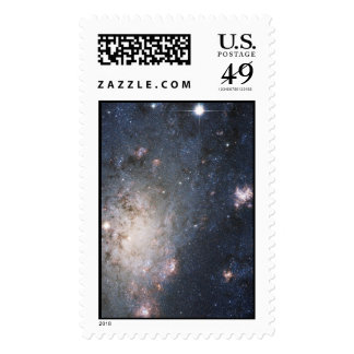 A Bright Supernova in the Nearby Galaxy NGC 2403 Postage
