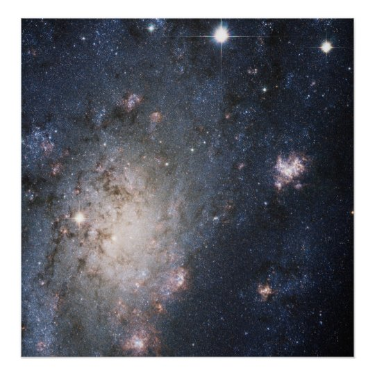 A Bright Supernova in the Nearby Galaxy NGC 2403 Poster