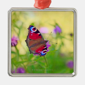 A brightly coloured Peacock butterfly is Metal Ornament