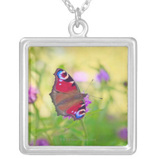 A brightly coloured Peacock butterfly is Silver Plated Necklace