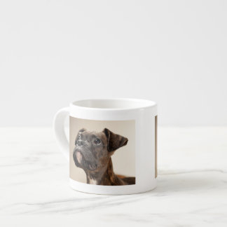 A Brindle Boxer puppy looking up curiously. Espresso Cup