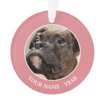 A Brindle Boxer puppy looking up curiously. Ornament