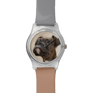 A Brindle Boxer puppy looking up curiously. Wristwatch