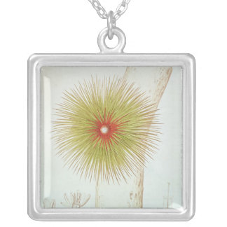 A Bromelia found in the Andes Square Pendant Necklace