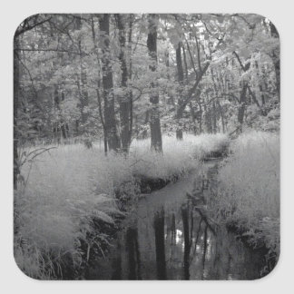 A brook in the forest/infrared photography square sticker