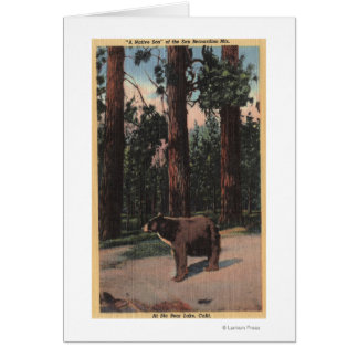 A Brown Bear in the Woods Cards