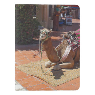 A Brown Camel laying down with Saddle and Blanket Extra Large Moleskine Notebook