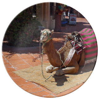 A Brown Camel laying down with Saddle and Blanket Porcelain Plate