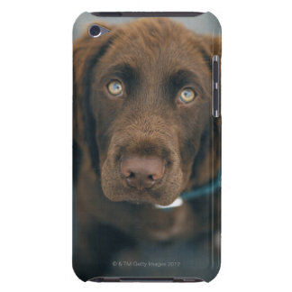 A brown dog. iPod Case-Mate case