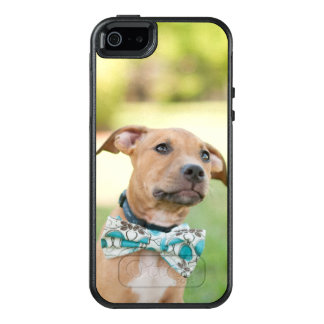 A Brown Puppy Wears A Colorful Bow Tie OtterBox iPhone 5/5s/SE Case