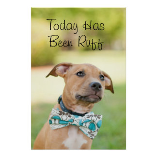 A Brown Puppy Wears A Colorful Bow Tie Poster