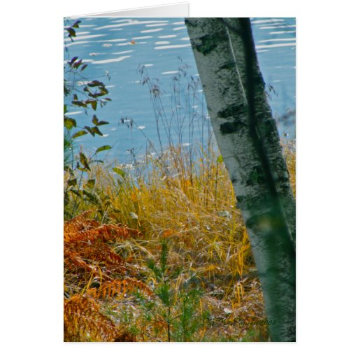 A Brush With Autumn Greeting Card