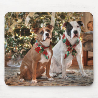 A Bubba and Kensie Christmas Mouse Pads