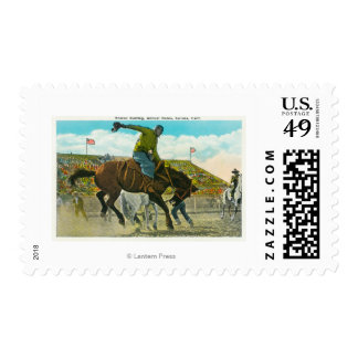 A Bucking Bronco at the Annual Salinas Rodeo Postage