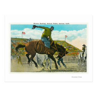 A Bucking Bronco at the Annual Salinas Rodeo Postcard