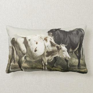 A Bull And A Cow Lumbar Pillow