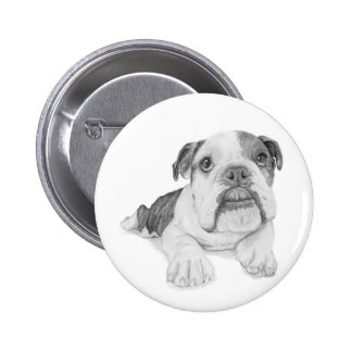 A Bulldog Puppy Drawing Pinback Button