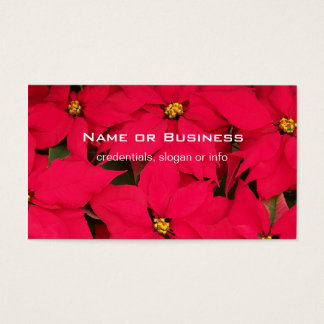 A bunch of Brightly Colored Christmas Poinsettias Business Card