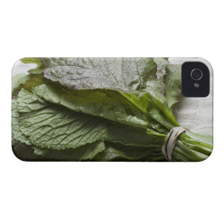 A bunch of fresh mustard greens, from a farmer's iPhone 4 cover