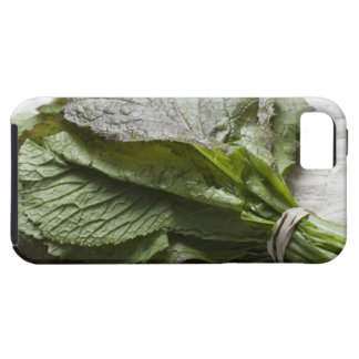 A bunch of fresh mustard greens, from a farmer's iPhone SE/5/5s case