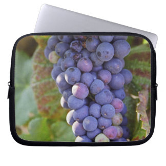 A bunch of Pinot Noir grapes in a Chambertin Laptop Sleeves