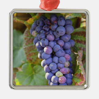 A bunch of Pinot Noir grapes in a Chambertin Metal Ornament