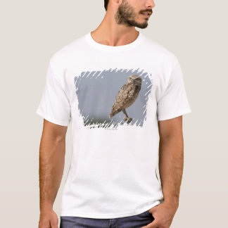 A burrowing owl sitting on a fence post. Taken T-Shirt