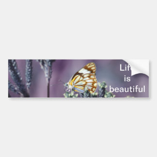 A butterflies beautiful life bumper sticker