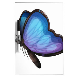 A butterfly Dry-Erase boards