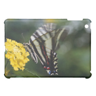 A butterfly, in the family of Swallowtails or iPad Mini Case