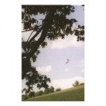 A Butterfly Kite Custom Stationery