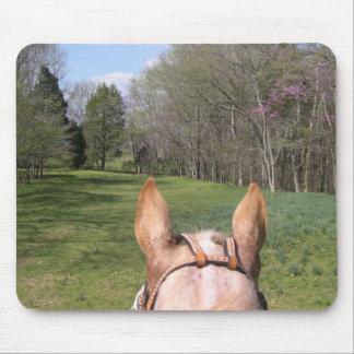 A caballo paseo tapetes de ratones