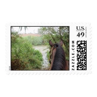 a caballo sello del río